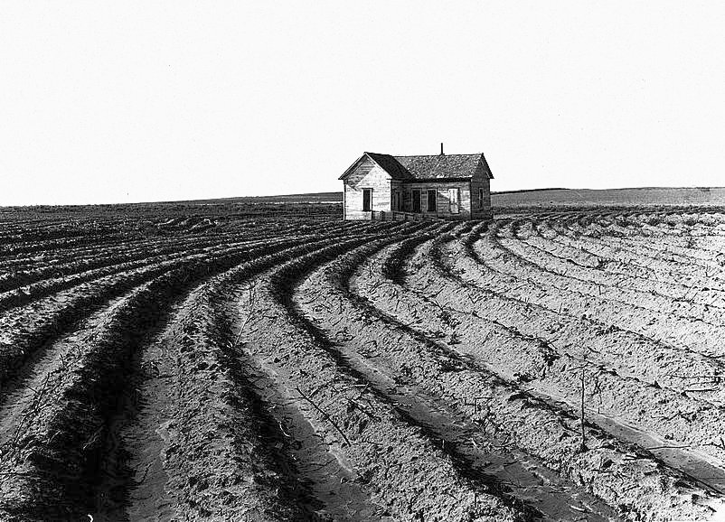 Tenantless_farm_Texas_panhandle_1938