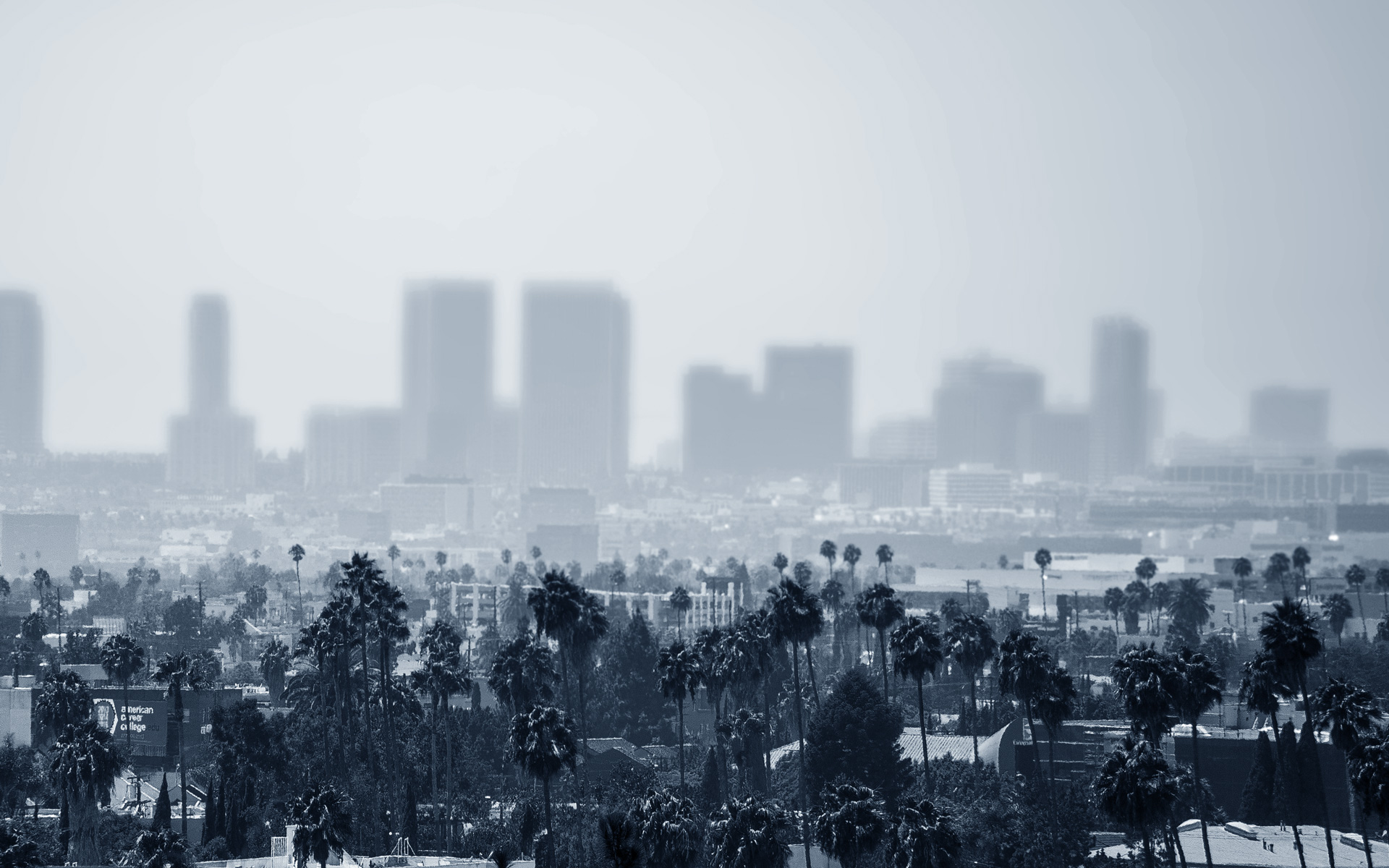 A Los Angeles Based Legal Practice Focused Exclusively on Commercial, Municipal, and International Insolvency Matters.